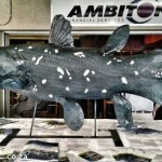 Coelacanth Port Elizabeth