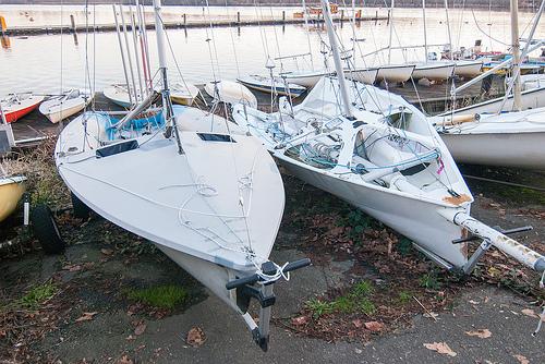 Sailing Image: 505 & I-14
